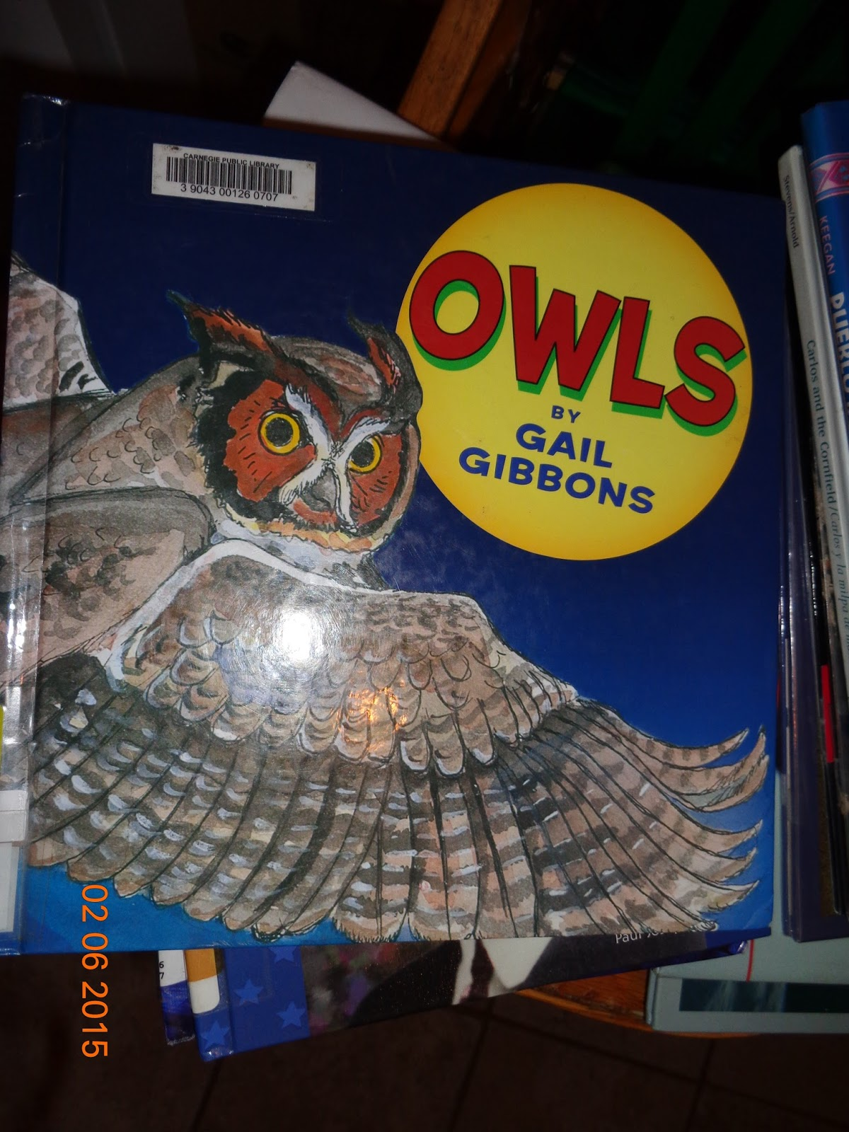 owl moon by jane yolen pdf