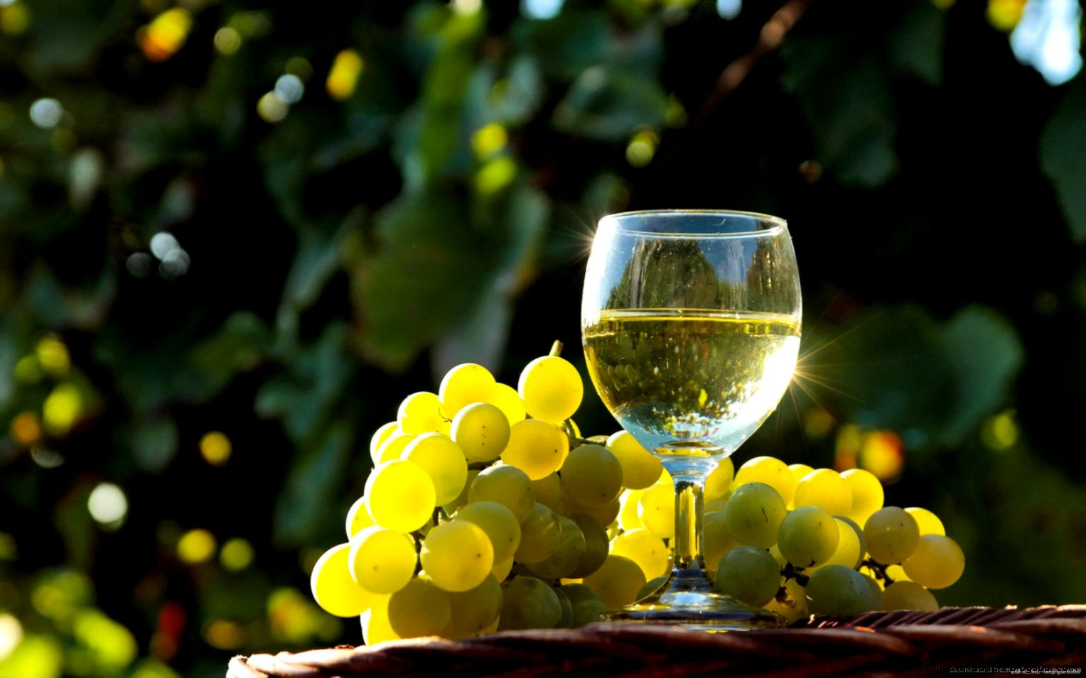 Download 1680x1050 Glass Of White Wine Wallpaper