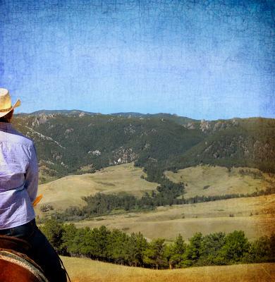 Wyoming essay