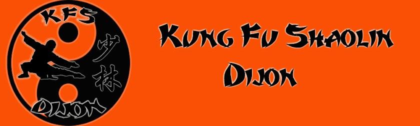 Kung Fu Shaolin Dijon - Av. Greuze