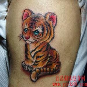Fotos de Tatuagens Femininas de Tigre
