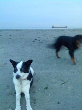 Nicky en Kaila, onze lieverds