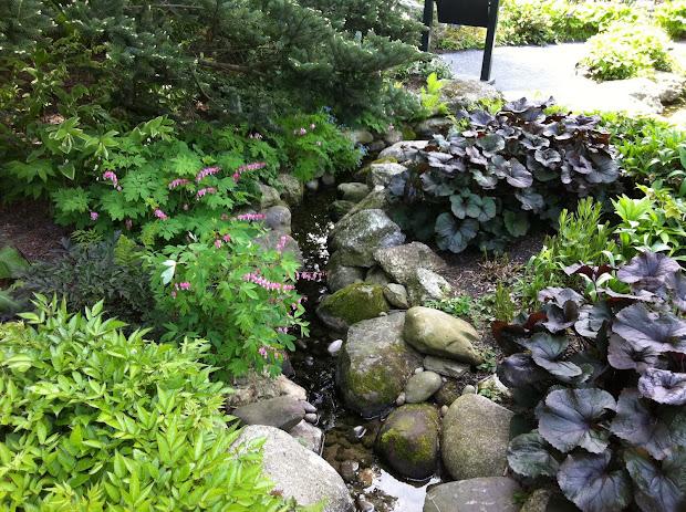 hingham gardens shade garden