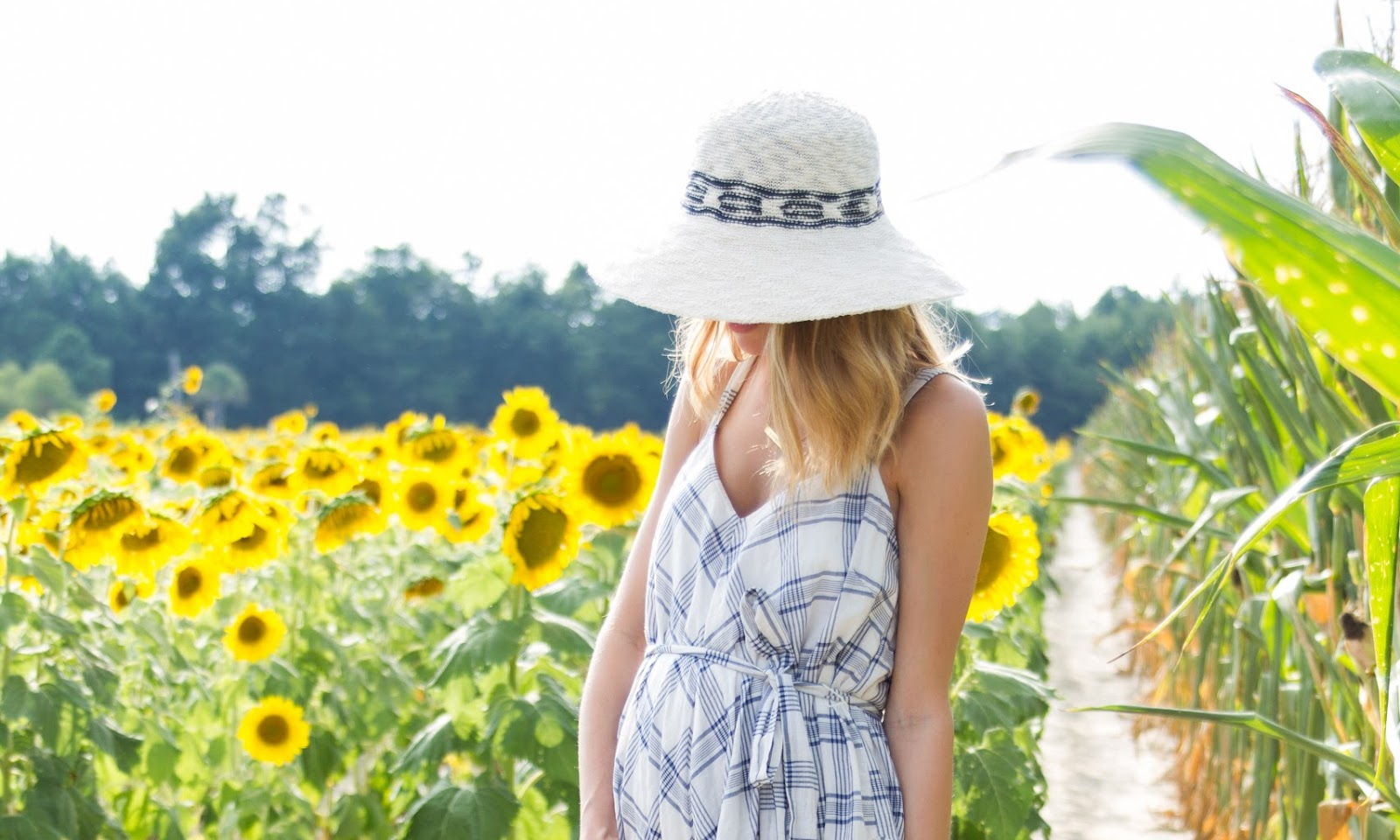 Sunflower Fields | Baby Announcement