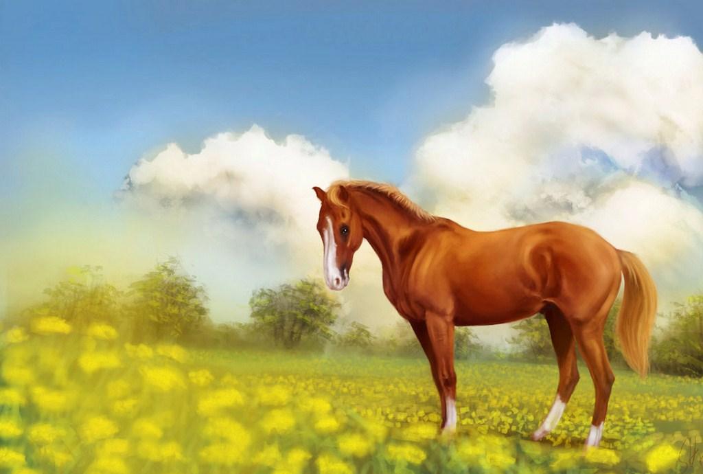 Cuadros modernos pinturas y dibujos hermosos caballos - Los cuadros mas bonitos ...
