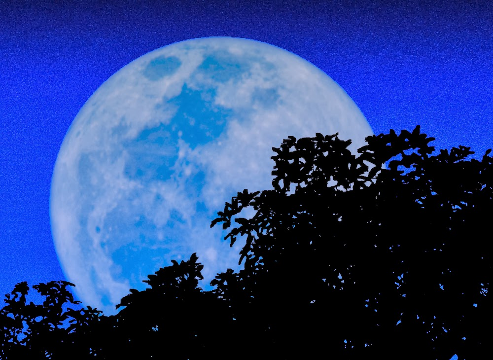 blue full moon wallpapers hd wallpapers