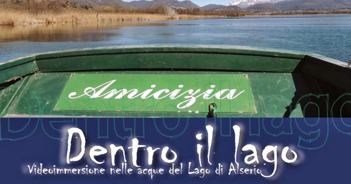 Brianza centrale lago di alserio cosa c 39 sotto lo - Lo specchio retrovisore centrale ...