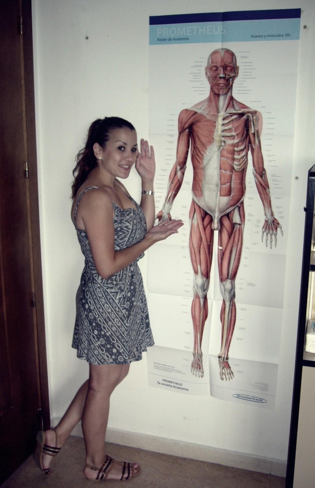 TO\'s En Formación: Anatomía Humana. Prometheus