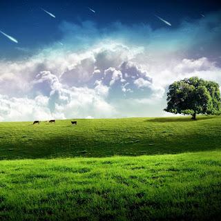 cielo con meteoritos  Imagenes de paisajes