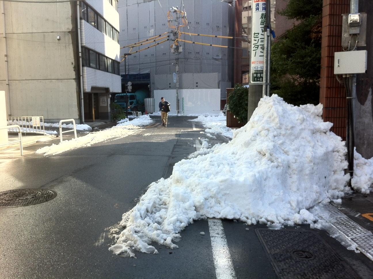 hatsuyuki or first snow in Tokyo