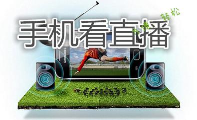 电视直播(手机端)