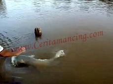 Gila Mancing Dapat Ikan Besar Sampai Ngucap