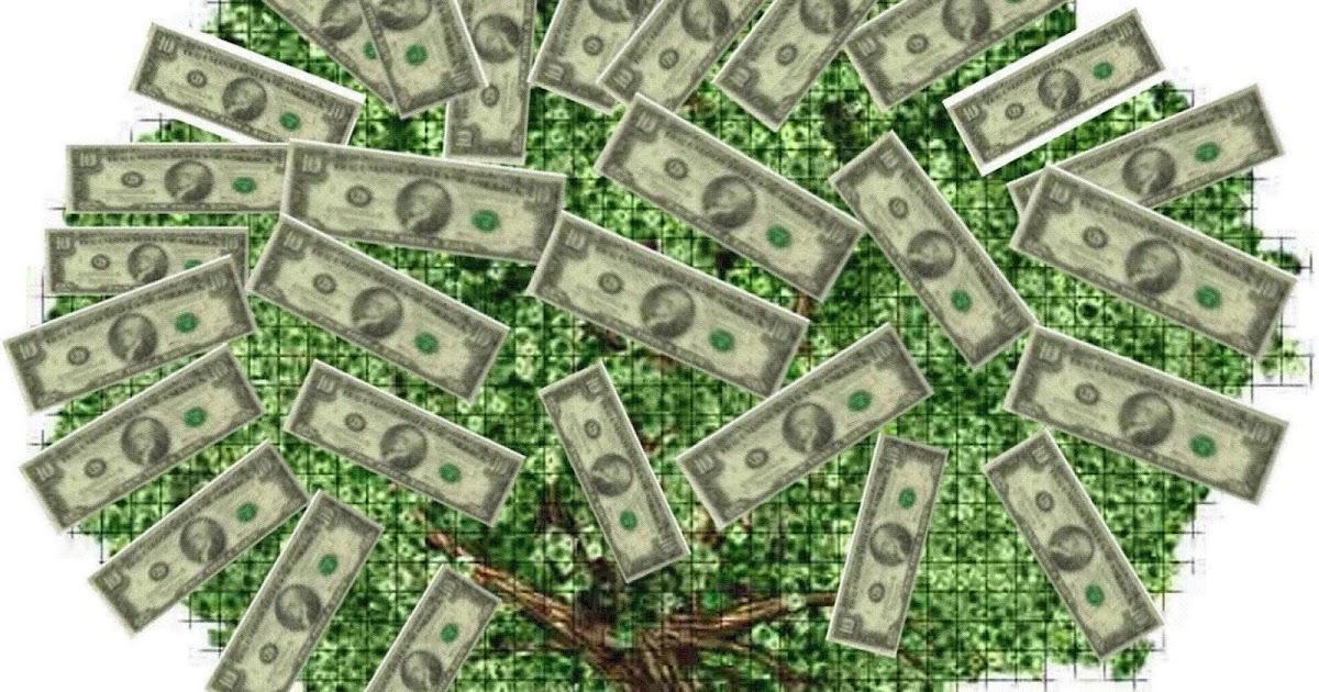 Kehilangan semua uang di forex
