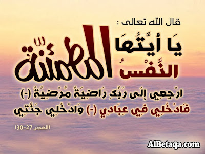 محمود-محمد-محمد-عطا