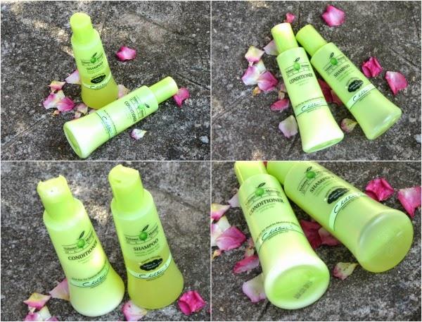 Shampoo e o Condicionador Chihtsai Olive N.P.P.E.