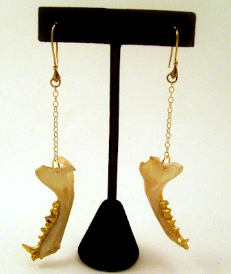 Creepy Pieces Of Taxidermy Jewelry Seen On www.coolpicturegallery.us