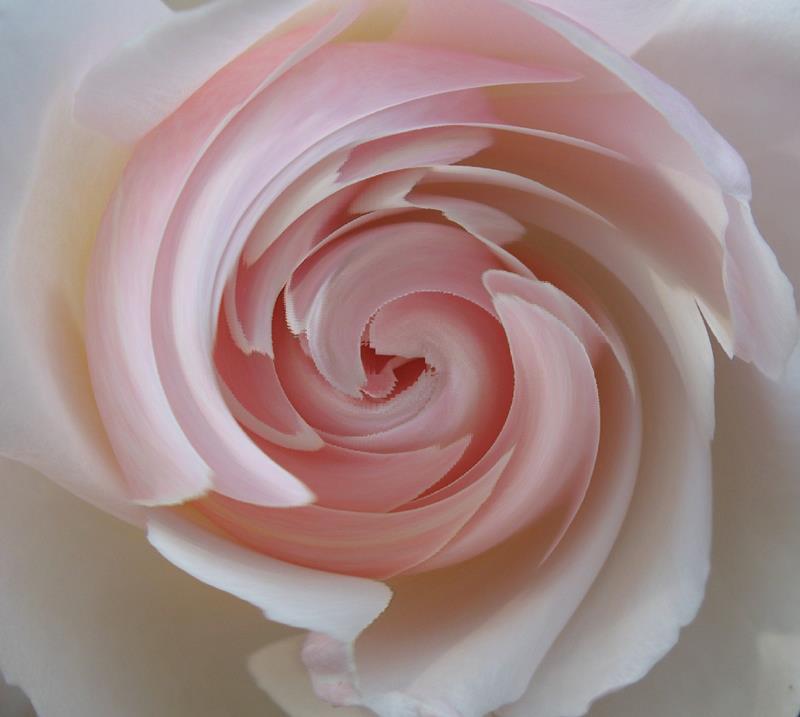 Προς ροζ...
