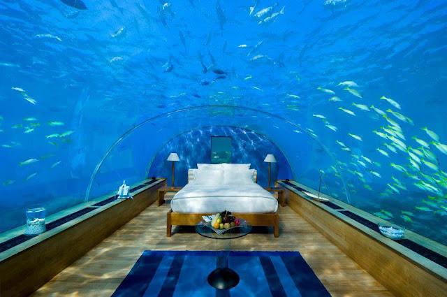 How nice it would be lie on this bed and look at the amazing beauty of the ocean? It's quite magical. This is located at a hotel resort named Atlantis at The Palm in Dubai. The resort is modelled after the Atlantis, Paradise Island resort in Nassau, Bahamas. Almost everything in it is underwater themed.