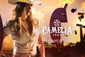 Ver Camelia la Texana capítulos completos, Telemundo