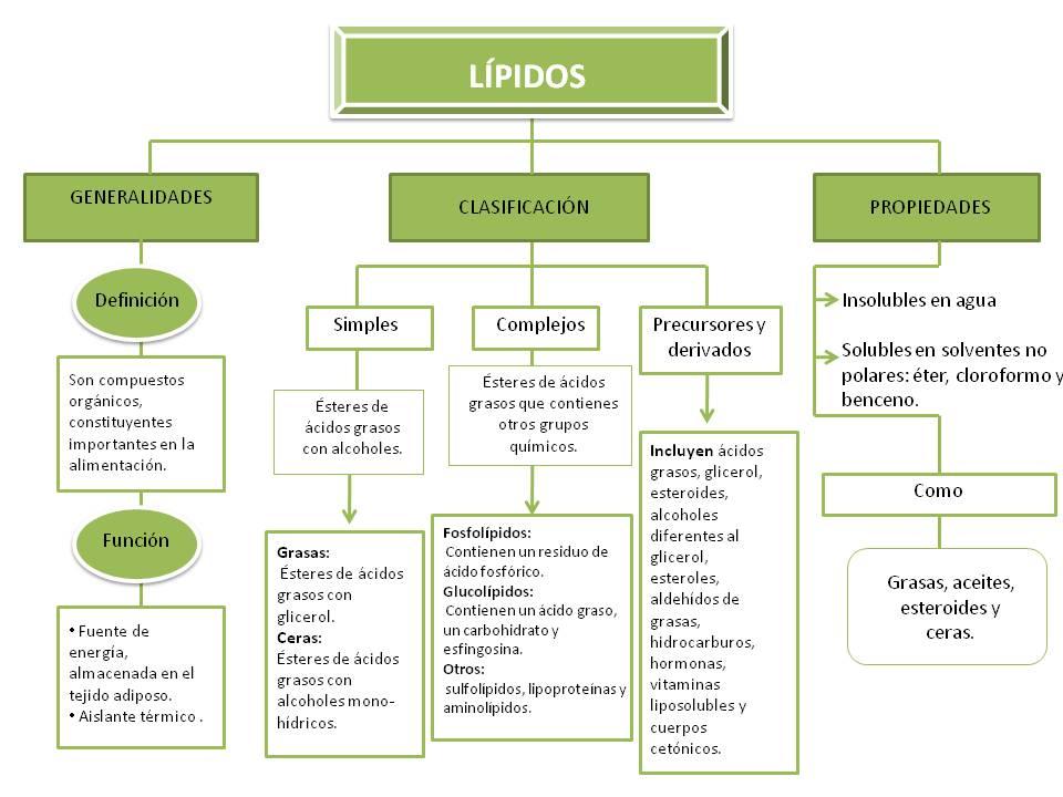 terpenos esteroides y eicosanoides