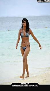 Shradda Das Hot bikini