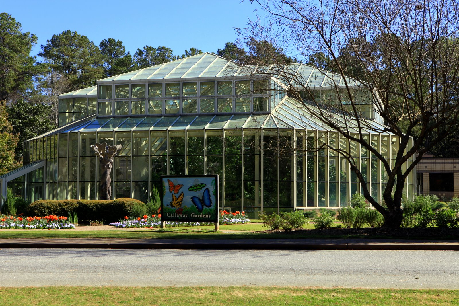 Today S Creations Callaway Gardens Butterfly House