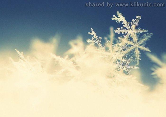 http://3.bp.blogspot.com/-2Th1f-Ctkdc/TX1khW6-HwI/AAAAAAAARH4/-TS8ZImKcMA/s1600/winter_59.jpg