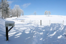 Winter on Our Farm