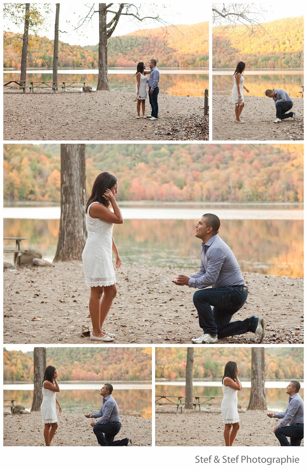 wedding proposal montreal