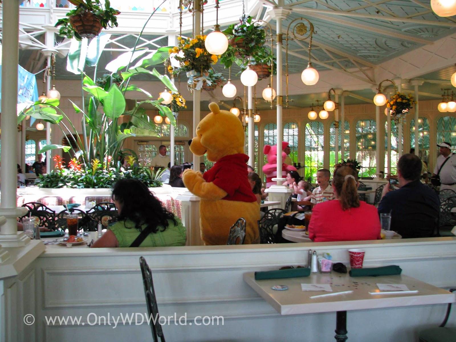 Disneyland dining coupons