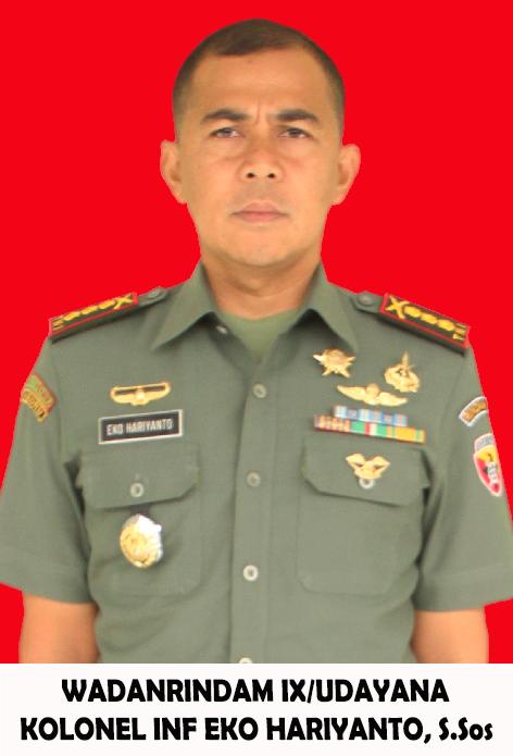 Wakil Komandan
