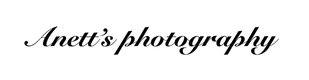 Anett's photography