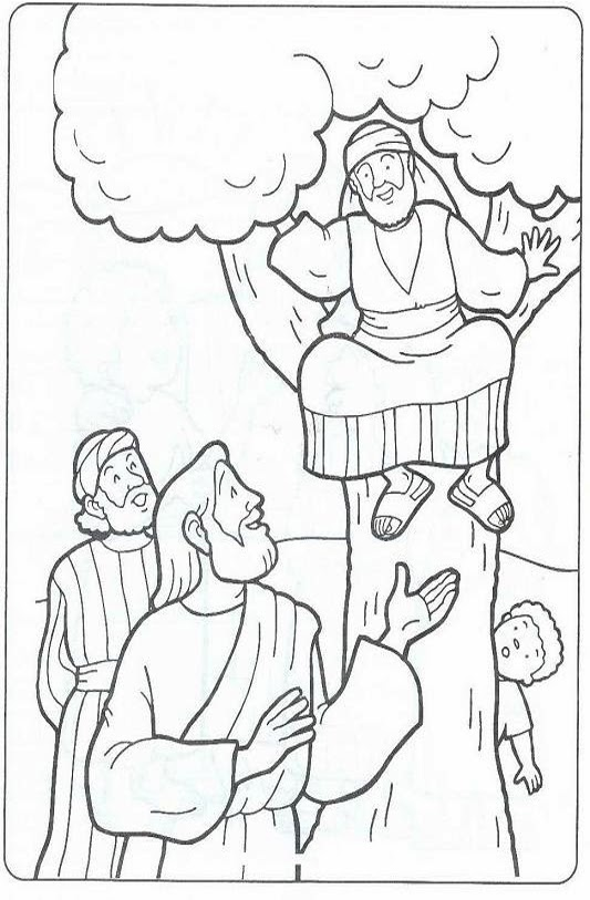 zaqueo coloring pages - photo #9