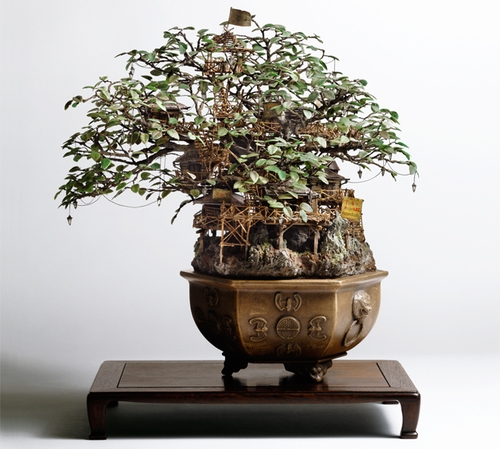 08-Bonsai-3-Japanese-Artist-Takanori-Aiba-Bonsai-www-designstack-co