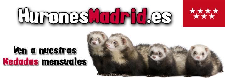 Hurones Madrid
