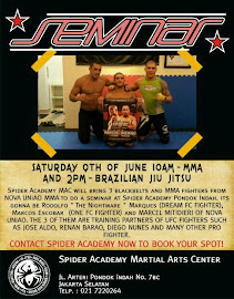 MMA and BJJ SEMINAR