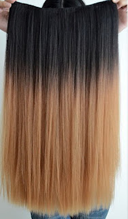 Hair Clip Ombre Danico Salon