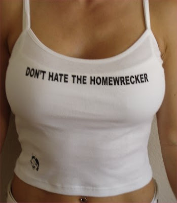 Home Wrecker 3 (Hot X) Full Movie Download Online