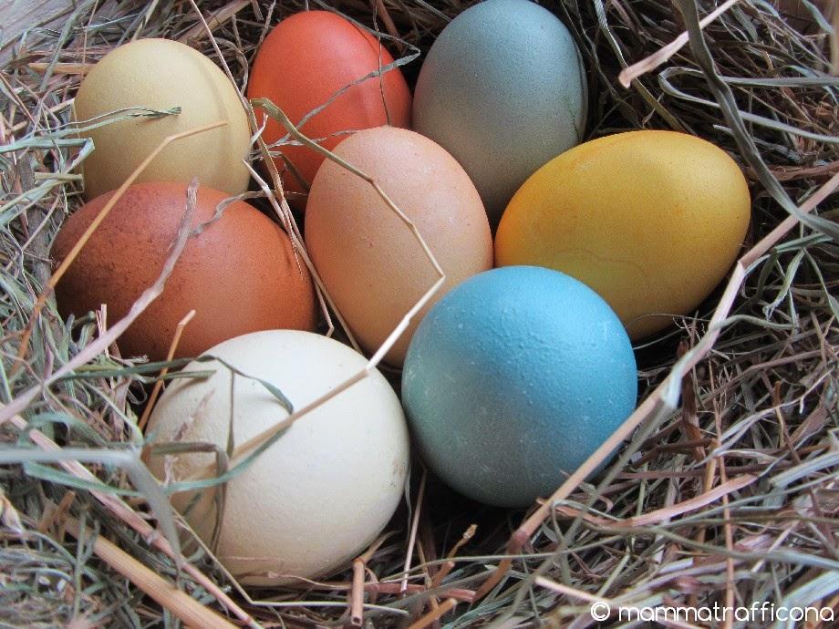 colorare le uova con colori vegetali