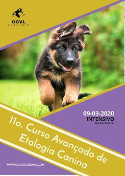 Próximo Curso Avançado de Etologia Canina - Intensivo