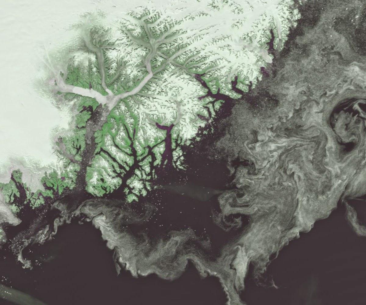 http://ocean.dmi.dk/arctic/ammassalik.uk.php