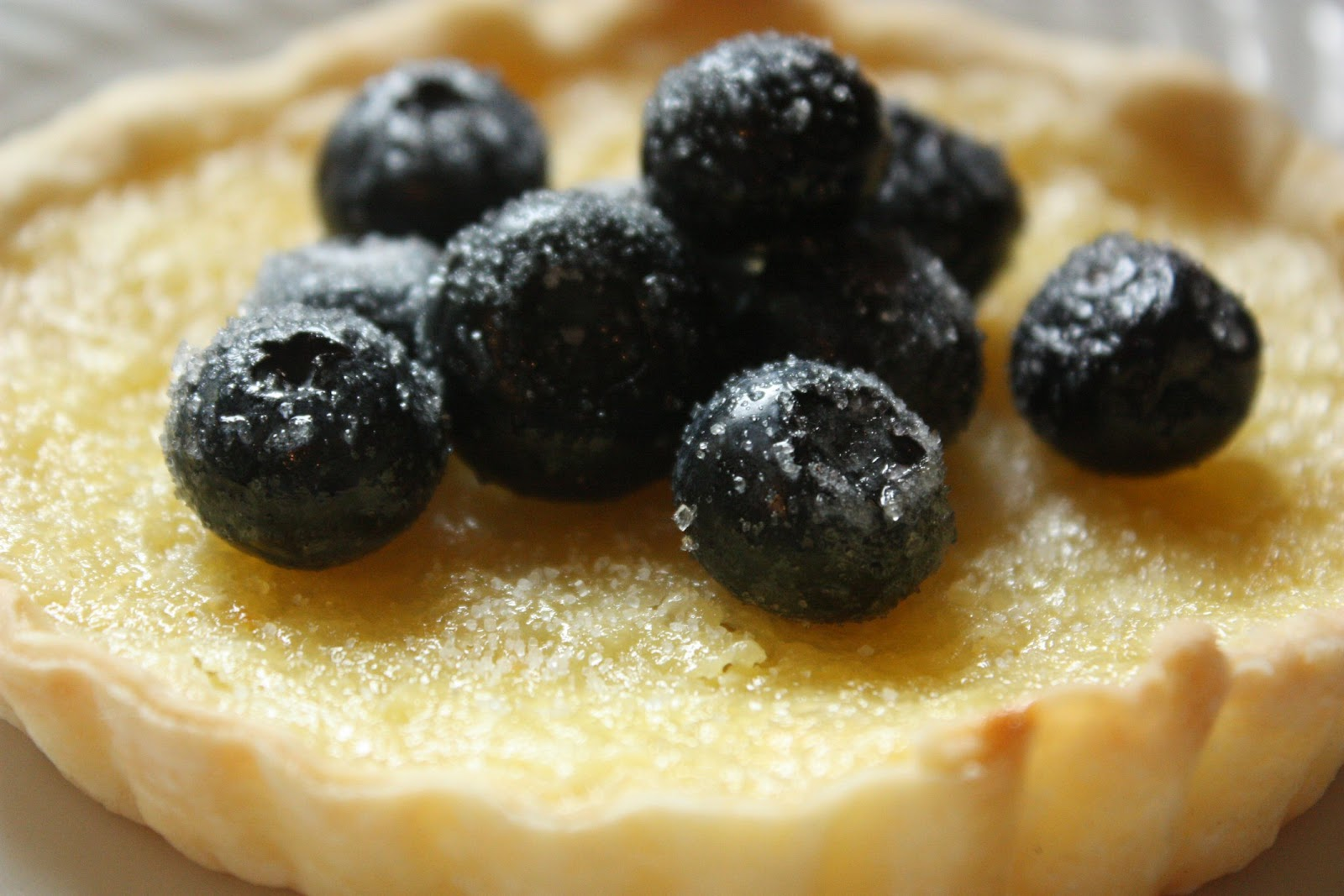 mini+lemon+tart+with+sugared+blueberries.jpg