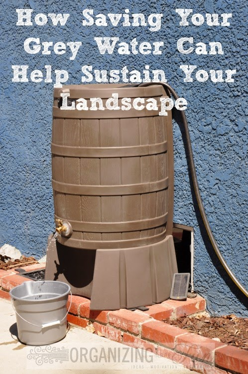 How Saving Your Grey Water Can Help Sustain Your Landscape :: OrganizingMadeFun.com