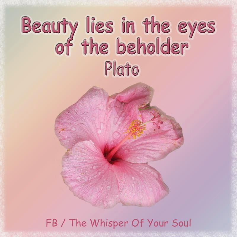 Beauty Lies In The Eyes Of The Beholder Quotes