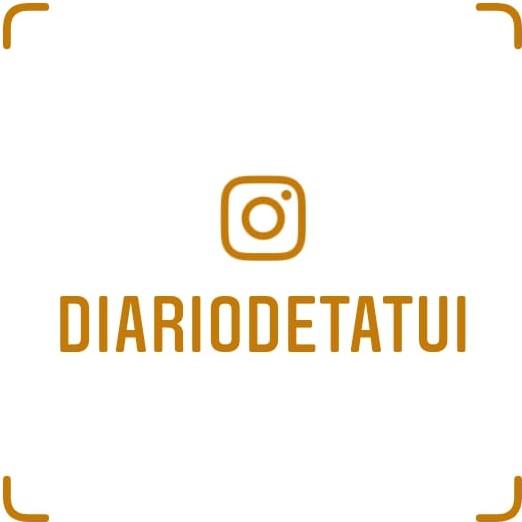 Siga o DT no instagram