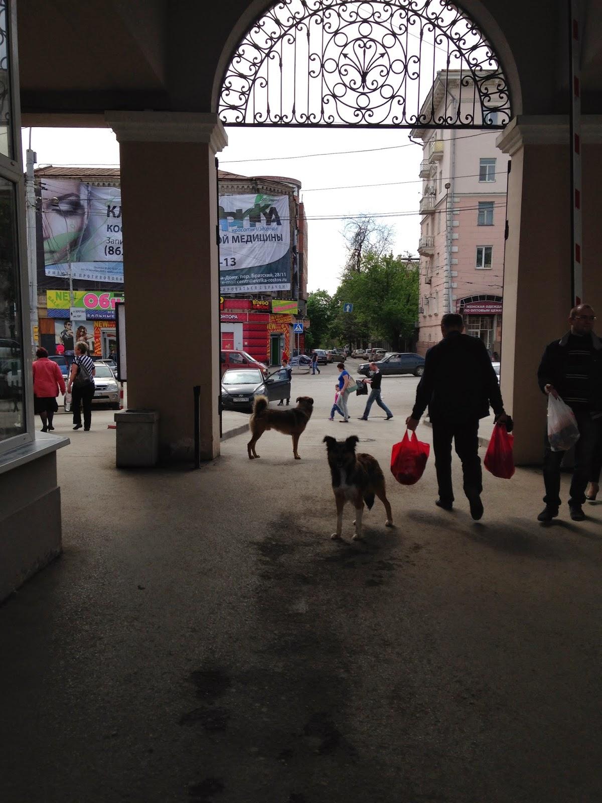 Центральный-Рынок-Ростов-1-Мая