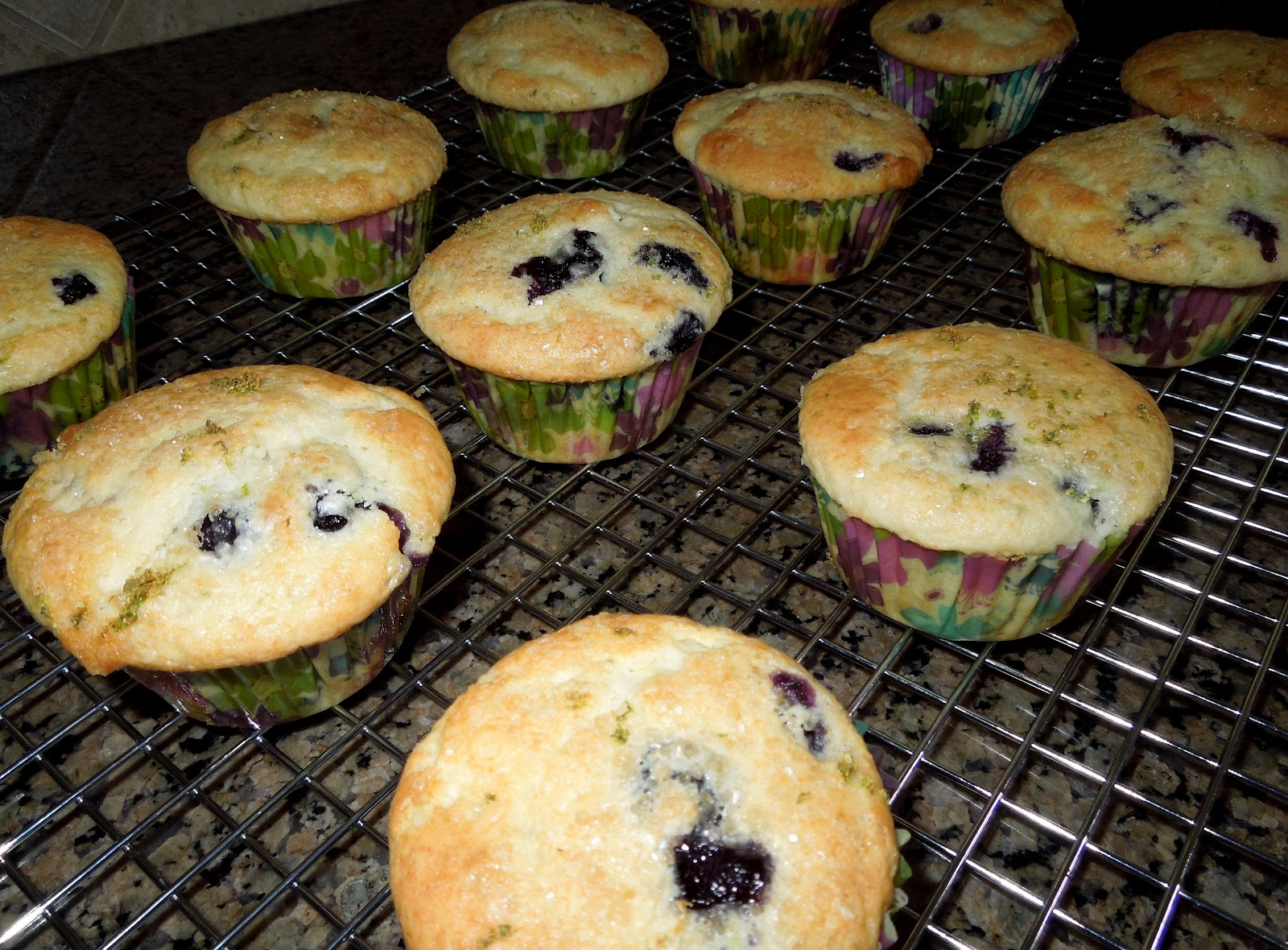 blueberry muffins blueberry muffins blueberry doughnut muffins perfect ...