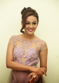 Actress Seerat Kapoor Pictures in Long Dress at Tiger Audio Launch 11.JPG