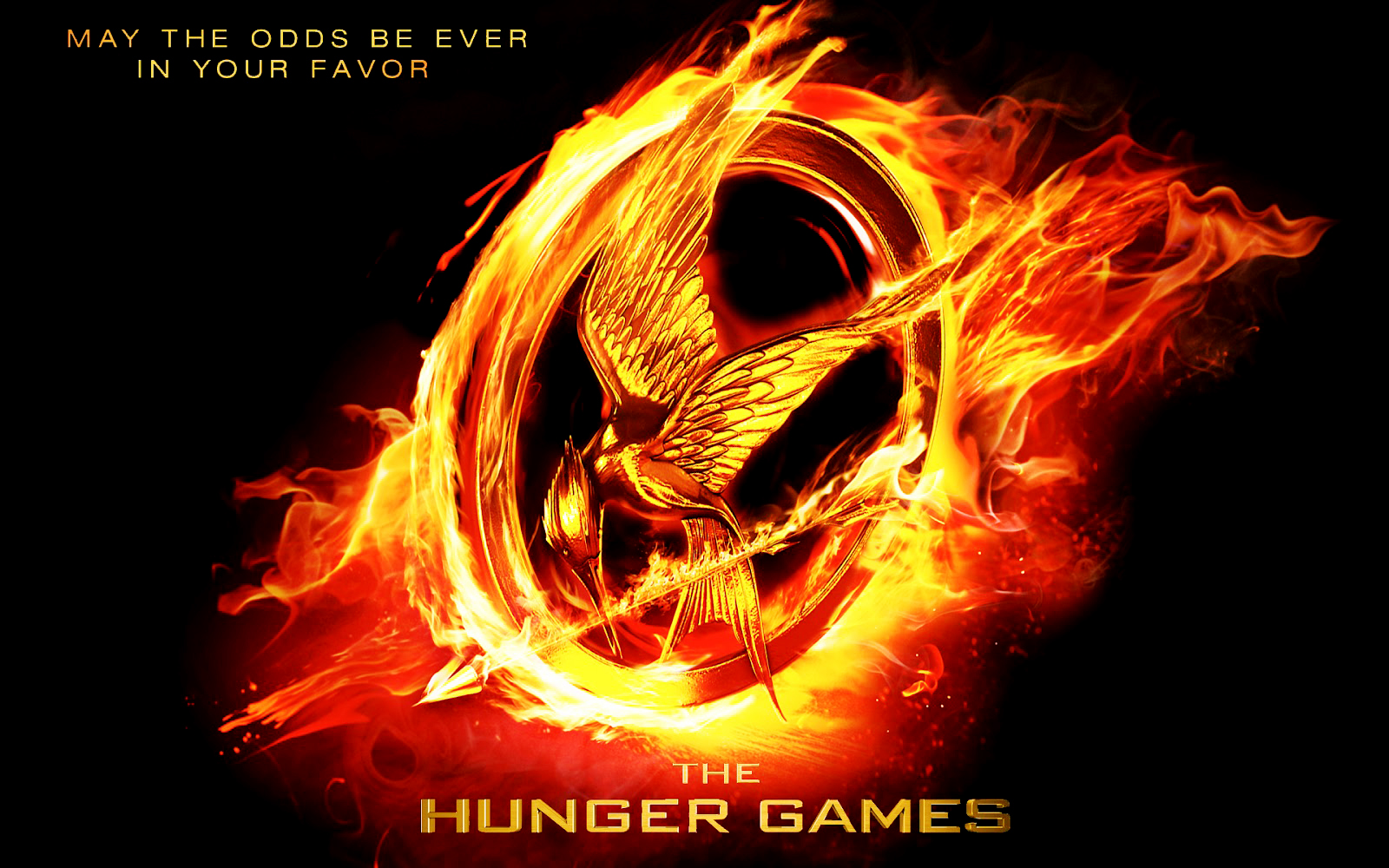 Record Breaking Movie The Hunger Games Posters HD Wallpapers