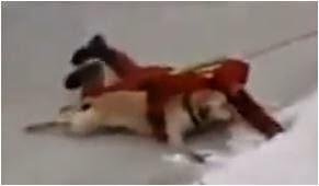 Σκύλος κλαίει για ΒΟΗΘΕΙΑ